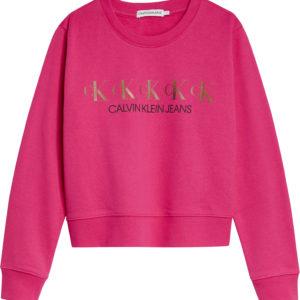 Calvin Klein Sweatshirt 0989
